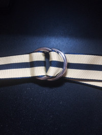 Ribbonbelt
